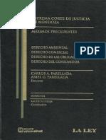256324451 Pinto Maximos Precedentes 1