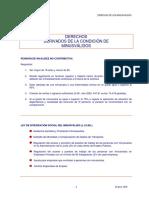 Drechos de la condicion de misnusvalido.pdf