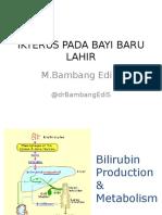 Ikterus Hiperbilirubinemia BBL