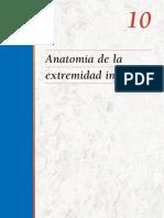 2006. 10 _ Anatomía de la extremidad inferior.pdf