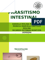 7. Parasitismo Intestinal
