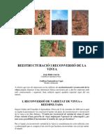 Reestructuracio i Reconversio de La Vinya