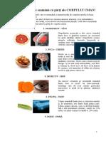10-Alimente-Care-Seamana-Cu-Parti-Ale-CORPULUI-UMAN.doc