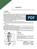 Curs esofag