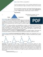 PIERCE-resumen-final-1.doc