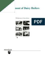 Management of Dairy Heifers