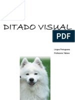 Ditado Visual