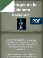 PATOLOGIA VERTEBRAL.ppt