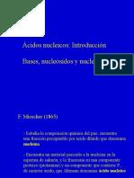 Acidos nucelicos