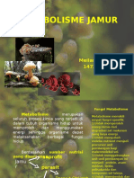 Ok Meilana Sapta D_metabolisme Jamur