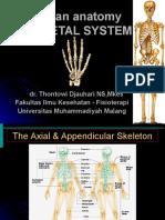 ANATOMI osteologi 2