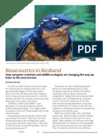 Bioacoustics in Birdland