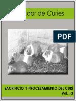 CURICULTURA_013