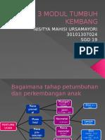 Lbm 3 Modul Tumbang Nisitya