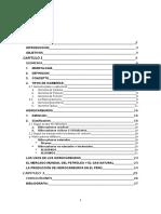 isometria final.docx