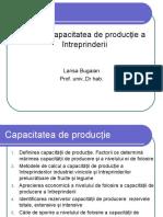 TEMA 7. Capacitatea de Productie
