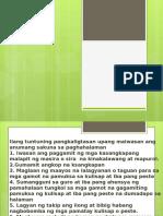 EPP (Paghahalaman)