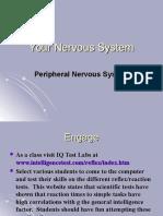 23 Biology 2-6-08 Nervous System 3 PNS