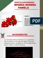 Mina Pamela