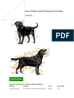 Dog Acupressure Chart and Pressure Points.docx