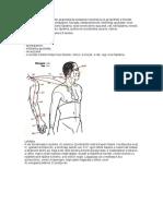 A Hármas melegítő meridián akupunktúrás pontjainak kezelésével jól gyógyítható a féloldali fejfájás.pdf