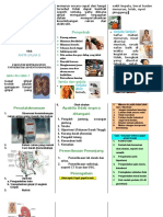Leaflet Ckd on Hd