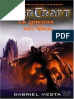La Sombra de Los Xel'Naga - Gabriel Mesta