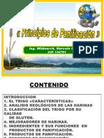 00 PRINCIPÌOS DE PANIFICACIÓN PARA FUNDESA 47d OK OK.ppt