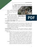 Cardenas.pdf