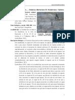 Guaxcama.pdf