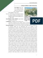 Indidura.pdf