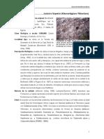 LaCaja.pdf