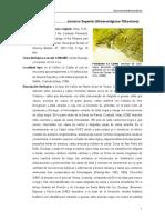 LaCasita.pdf