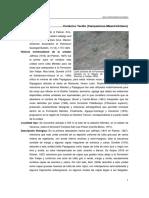 Mendez.pdf