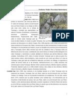 Tamasopo.pdf