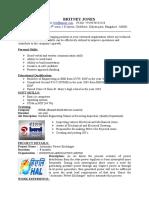 Professional Resume Format (7)