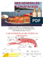 CRUSTACEOS.ppt