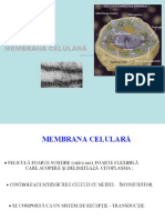 2. Membrana celulara