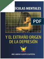 Cuadriculas Mentales y El Extraño Origen de La Depresión