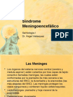 Síndrome Meningoencefalico