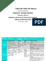 Modelos de Intervención Practica Clinica Psicología