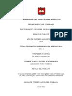 O CASO XIMENES LOPES E AS VIOLAÇÕES AOS ARTIGOS 8.1 E 25.1 DA CONVENÇÃO AMERICANA DE DIREITOS HUMANOS - DERECHO PUBLICO.doc