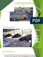 Tecnologías de Remediación de suelo
