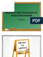 20151112141115anatomy and Physiology of Speech Mechanism