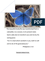 This Beautiful Butterfly Was Transformed From A