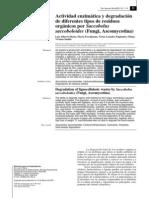 actividad enzimática y degradación de diferentes tipos de residuos orgánicos con saccobolus saccoboloides