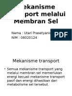 Mekanisme Transport Melalui Membran Sel