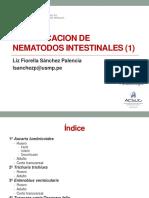 2015 - Practica 12. p Aula Nematodos I