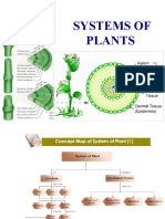 05. Systems of Plants.1