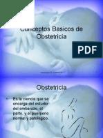 Conceptos Basicos de Obstetricia